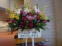 purecolumn_20121116_12